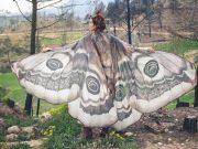 История успеха дизайнера CostureroReal - готический стиль и бабочки